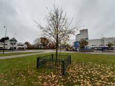 Hekje dat verdween van Raadhuisplein in Apeldoorn heeft weer 'koninklijke' functie