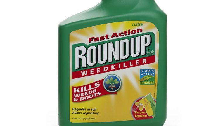 Glyfosaat is het actieve bestanddeel in Roundup, de populaire onkruidverdelger van Monsanto. Beeld Kos