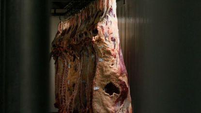 """Advocaat-generaal bij Europees Hof: """"Ritueel geslacht vlees is niet in strijd met biolabel"""""""