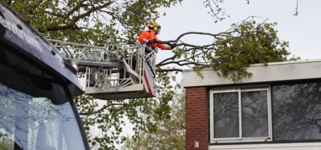 Brandweer rukt uit voor stormschade in Hoogland: afgebroken tak hangt op dak
