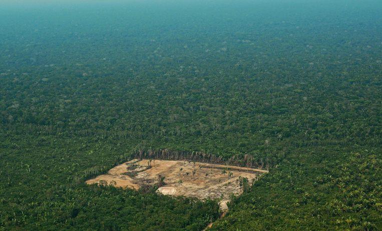 Duidelijke sporen van ontbossing in het westelijke deel van het Amazonewoud in Brazilië. Beeld AFP