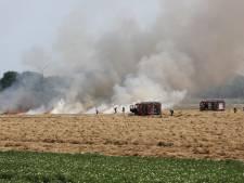 Grasland bij Fijnaart in vlammen op, brandweer ter plaatse