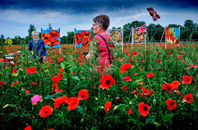 In het veld van klaprozen konden bezoekers afgelopen zaterdag de kunstwerken op de bijzondere plek bekijken