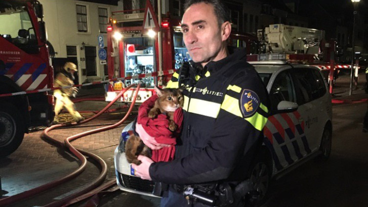 Kat gered bij woningbrand in Zutphen