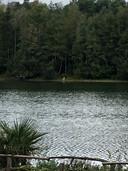 De minnaar van Emma zou aan de overkant van het water een enorme teddybeer hebben gezet. De beer is in elk geval vastgelegd op deze foto.