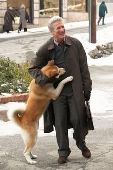 De leukste films en mooiste liedjes over honden