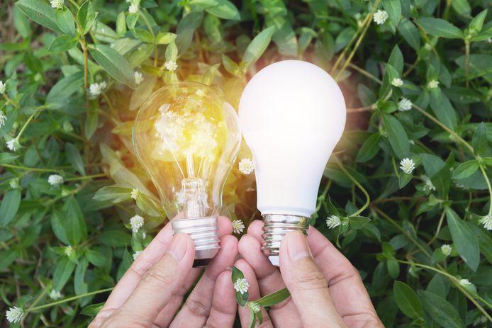 Le nouveau label concerne les spots, ampoules et autres types d'éclairage possibles pour un luminaire.