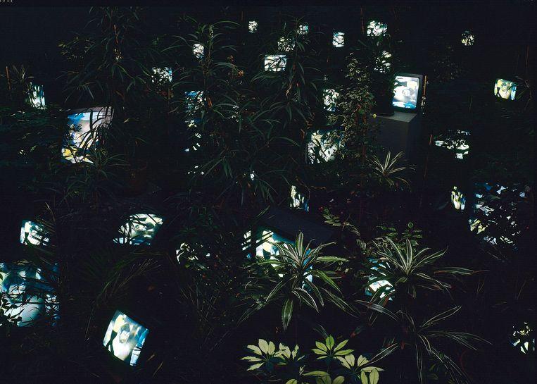 Nam June Paik, 'TV Garden' Beeld bpk