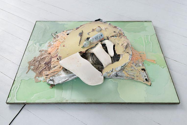 Isabelle Andriessen, Resilient Bodies I, 2017 Beeld Noortje Knulst