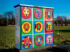 Regio kan wel wat kleur gebruiken in sombere coronatijden, vinden ze in Cuijk: 'Weg met die lelijke elektriciteitskasten'
