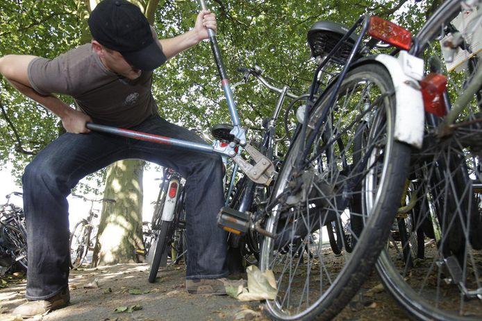 Volgens de RAI Vereniging wordt Nederland een waar walhalla voor Oost-Europese fietsendieven