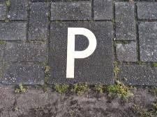 Eigenaren bungalows mogen extra auto kwijt bij huisje op De Zeeuwse Parel
