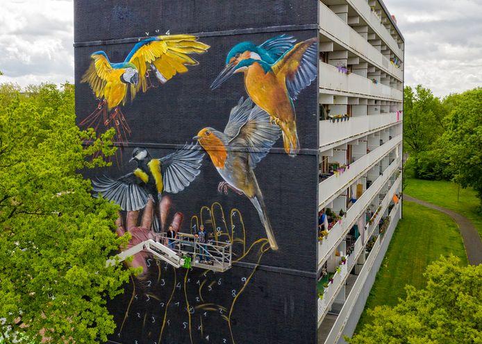 Joost Zwanenburg is bekend van de grote vogels op Alphense flats.