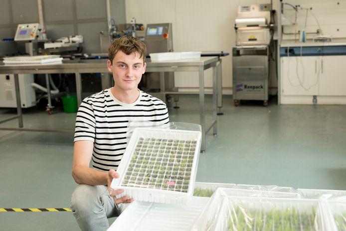 Sjoerd Bijl werkt deze zomer in het bedrijf van zijn vader.