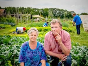 Dagritme opbouwen tussen de groenten