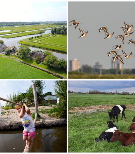 In deze wonderlijke mengelmoes van natuur en stadse heisa kun je je heerlijk uitleven