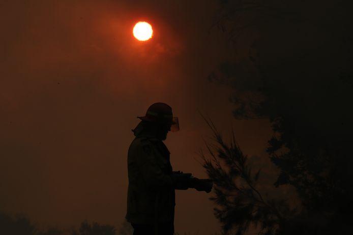 Zeker 800 brandweerlieden strijden tegen de allesvernietigende vlammen.