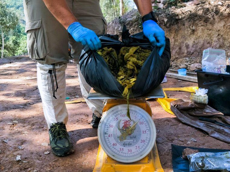 Het dier heeft in totaal 7 kilogram plastic opgegeten.