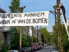 Gratis boom voor Arnhemmers moet stad in zomer koeler maken