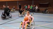 Basisschool zamelt geld in voor 'Orly on wheels'