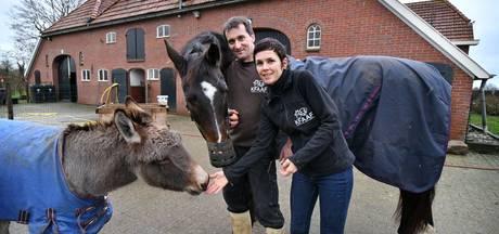 Zorgboerderij KFAAF bij Geesteren biedt dieren 'humane' oude dag