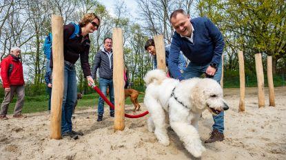 Schepen Fons Duchateau test hondenspeeltuinen uit in Antwerpen