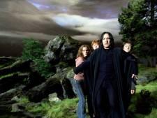 Achtste Harry Potter-boek in de maak: tien jaar later