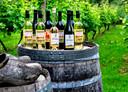 Een selectie wijnen van 'De Smaak van Bilderhof'.
