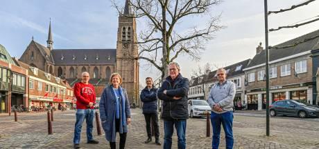 Vinnig debat over behoud of kappen historische lindeboom in Gastel
