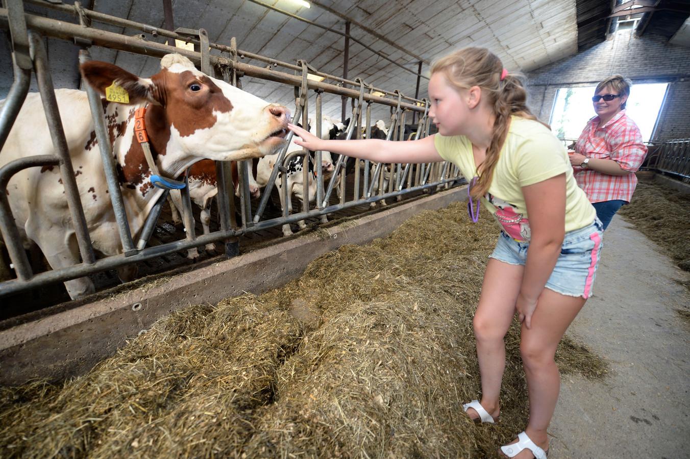 Beltrum - Boerderijenfietstocht Beltrum, fietsers nemen kijkje in veehouderij Hanselman Jelske Franken met haar moeder en oppas