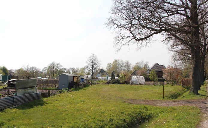 Het volkstuincomplex aan de Zwilbroekseweg.