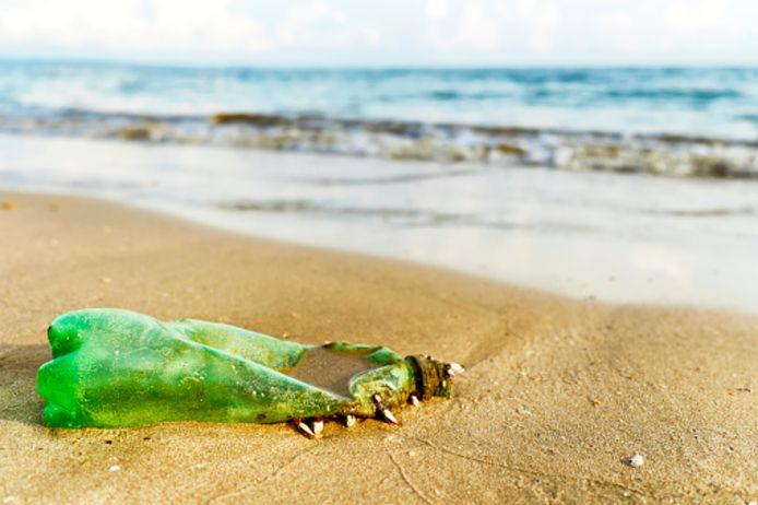 Niet alleen plastic flesjes, maar ook plastic afval van visnetten zouden de Zeeuwse oevers bevuilen.