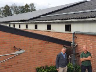"""Boeren en buurtbewoners richten samen coöperatie Halnet op in Minderhout: """"Samen gaan we voor groene stroom en efficiënter energieverbruik"""""""