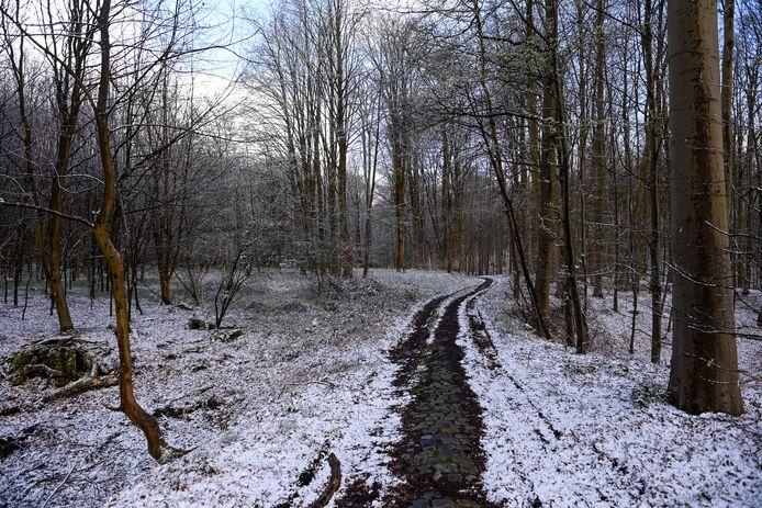 Een winters landschap in Hoeilaart.