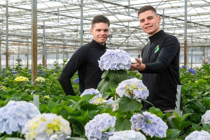 Joeri (links) en Pjotr van JLP Flowers in Angeren, voorheen bekend als Kwekerij Borgers.