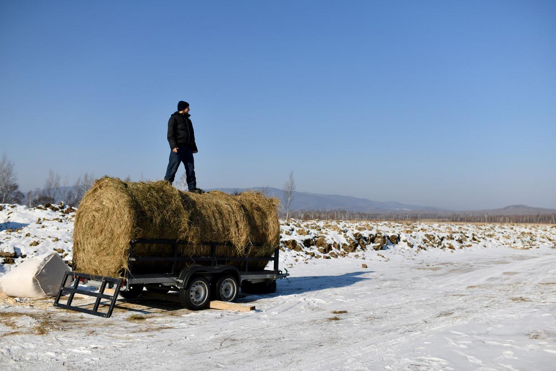 Michail Oetrobin bouwt een boerderij uit op de hectares die hij van de overheid kreeg in het Verre Oosten van Rusland. Beeld Yuri Kozyrev / Noor