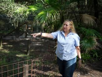 """'Tiger King'-gezicht Carole Baskin bezorgd over loslopende tijger in Texas: """"Roekeloos en extreem gevaarlijk"""""""