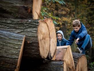 Nieuwe belevingstocht voor kinderen aan Zilvermeer