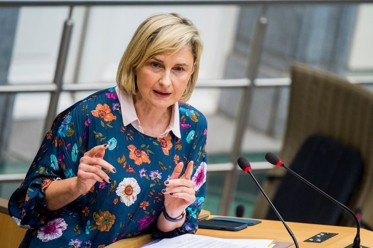 Vlaams onderwijsminister Hilde Crevits (CD&V). Beeld BELGA