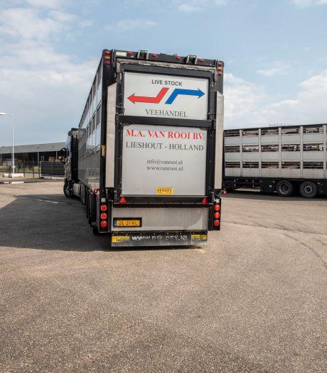 Dierenartsen bij Van Rooi Meat in Helmond getest op coronavirus