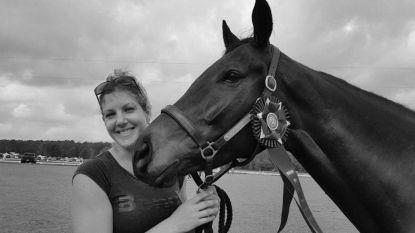 Drama in de paardensport: 33-jarige amazone komt om het leven bij val, ook paard sterft