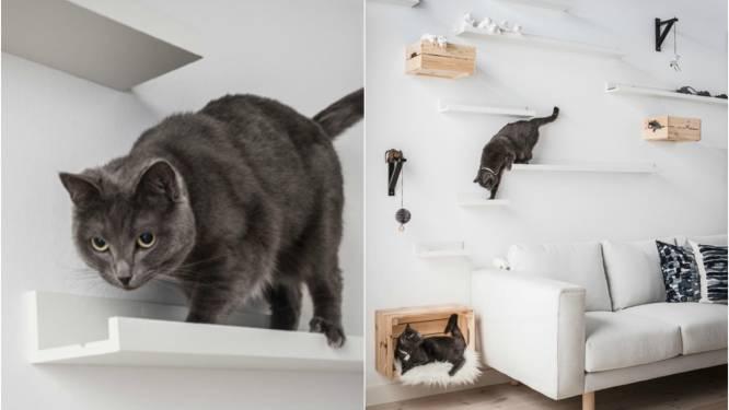De Nieuwe Ikea App Toont Je Meteen Hoe Die Ene Zetel In De Kamer Zal Staan Style Hln Be