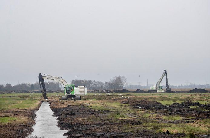 Nieuwe natuur in de maak in de Binnenveldse Hooilanden.