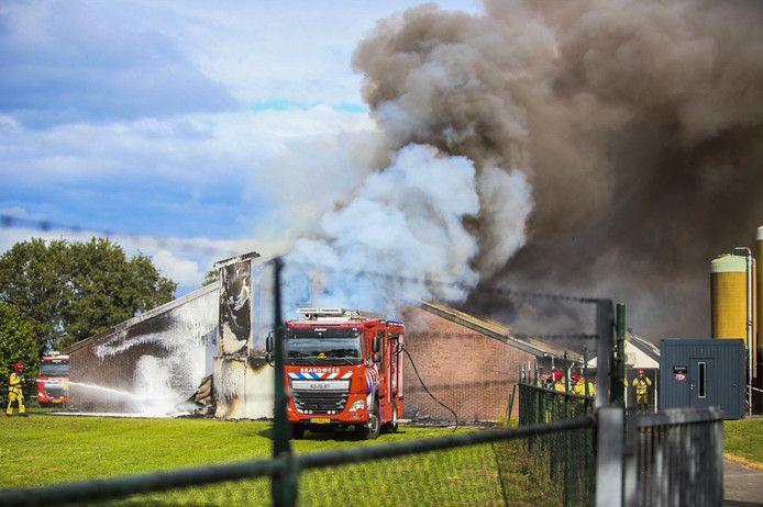 De grote stalbrand aan de Pijlstaartweg in Asten.