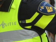 Helmonder (34) opgepakt voor 'zomaar in gezicht schoppen' van badgast bij strandbad Nederheide in Milheeze