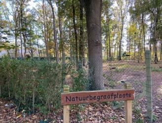 Natuurbegraafplaats op komst in Lokeren