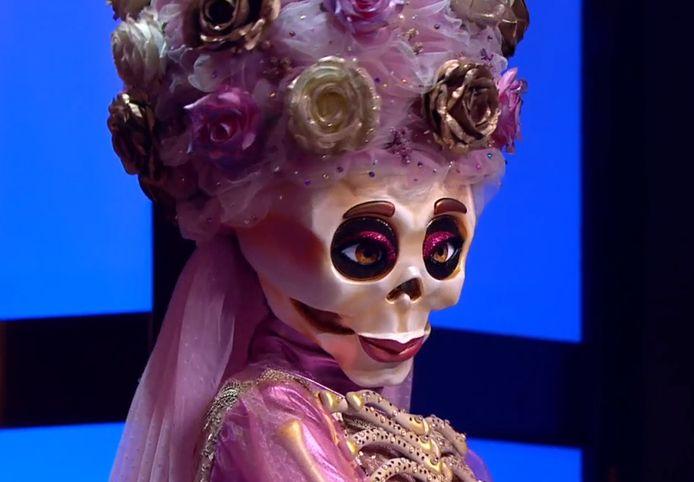 Het skelet.