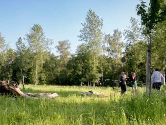 """Eerste voedselbos aangeplant in Sint-Niklaas: """"Hopelijk kan dit een voorbeeld zijn"""""""