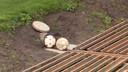 Na het schieten van de bal komt deze via een ondergronds tunnelsysteem weer op het veld terecht.