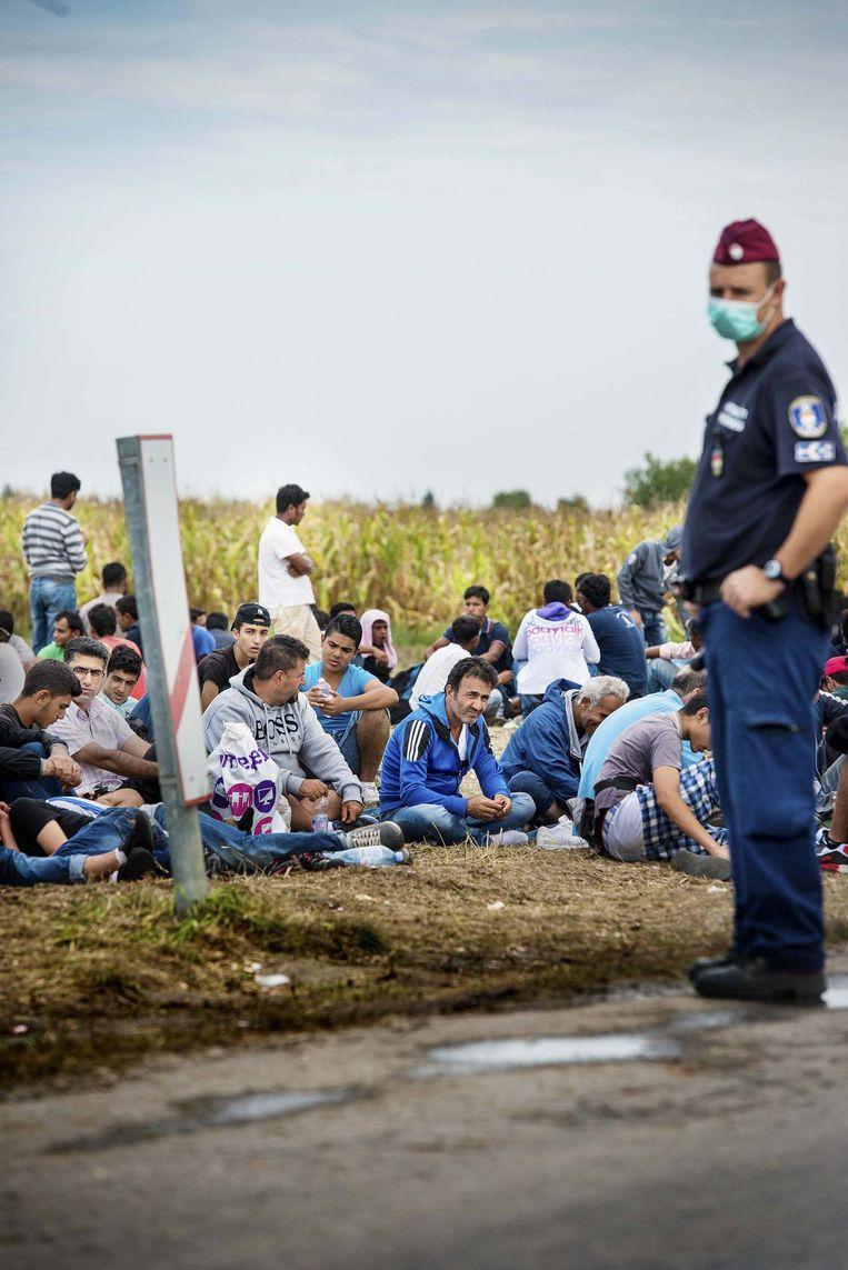 Spoorweg bij Röszke. Hier steken asielzoekers de grens tussen Servië en Hongarije over Beeld Eric De Mildt